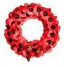 Armistice Day 11/11/11 North Tawton Bondleigh