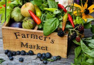 Farmers Market In North Tawton Town