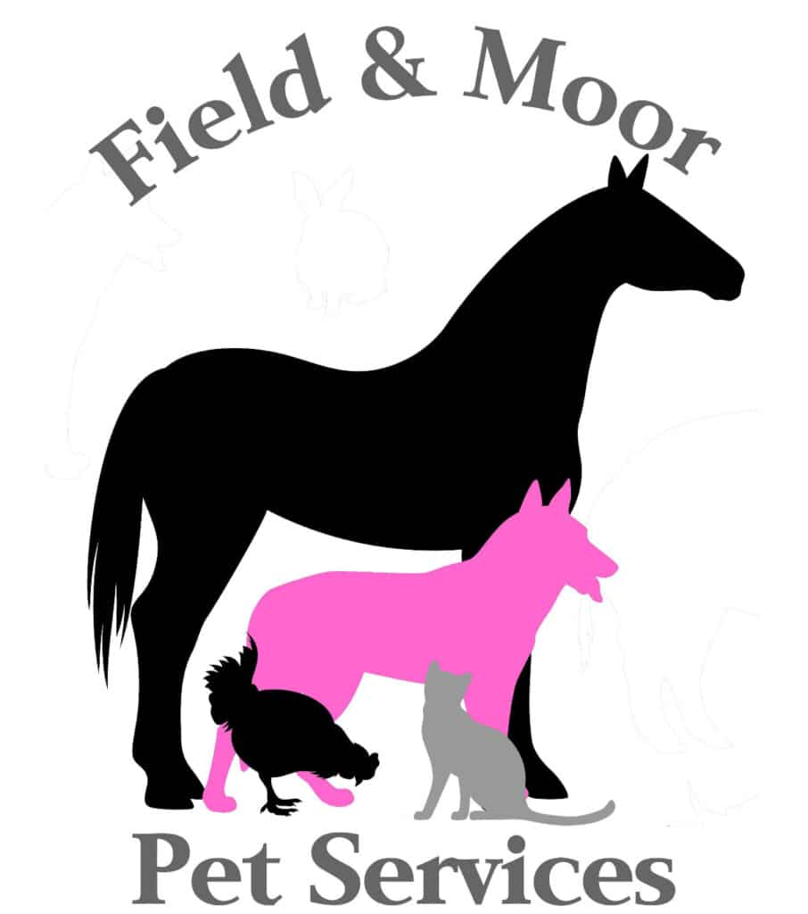Field and Moor Pet Services In North Tawton Town