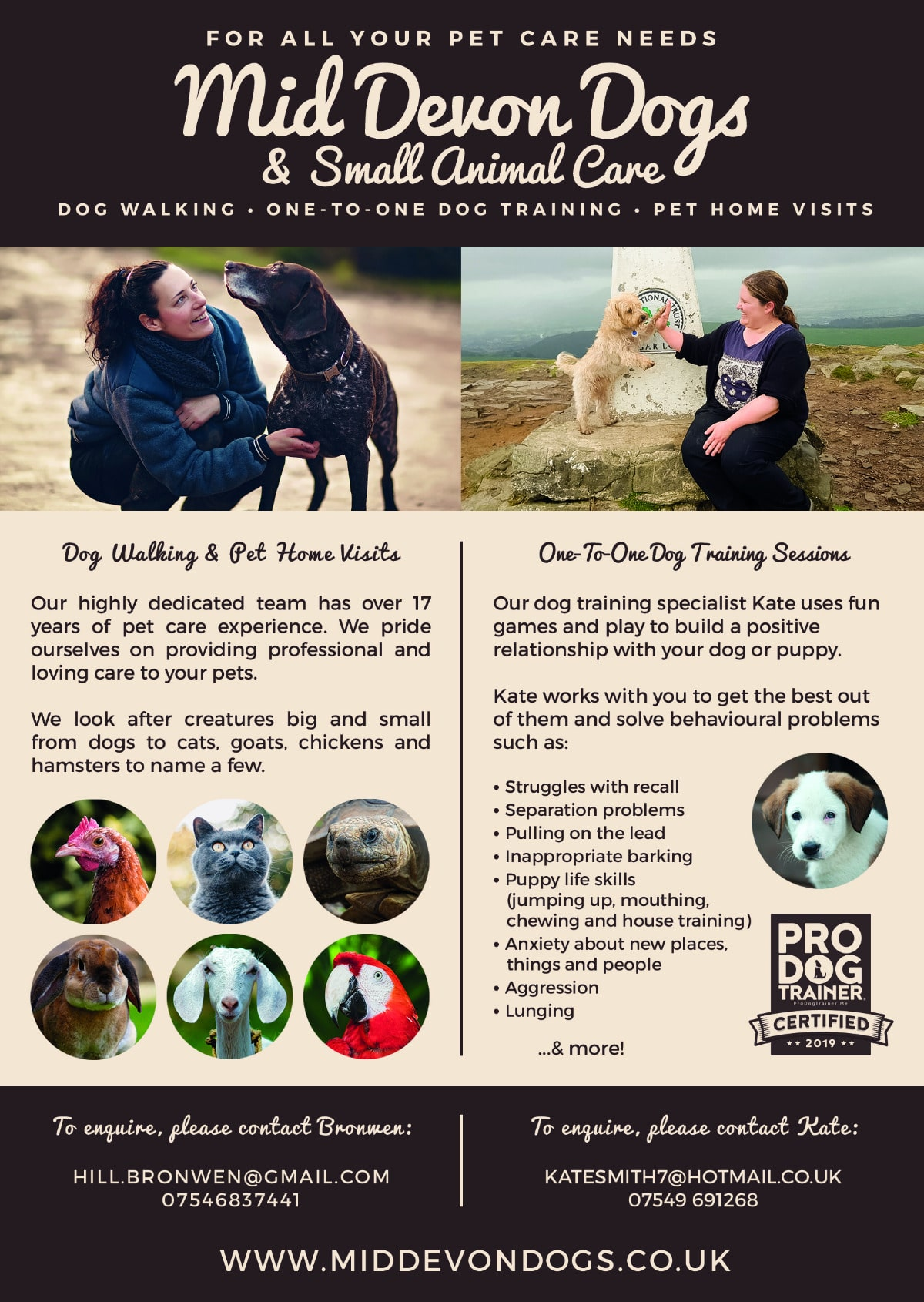 Mid Devon Dogs Small Animal Care North Tawton Business Directory