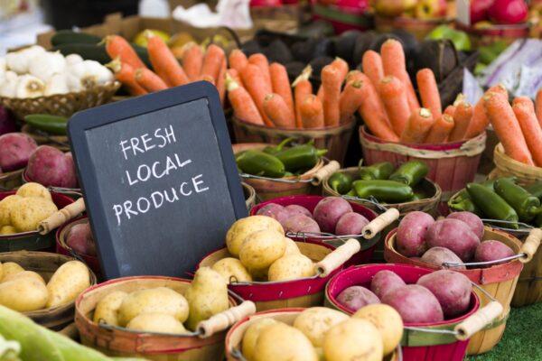 North Tawton Outdoor Market